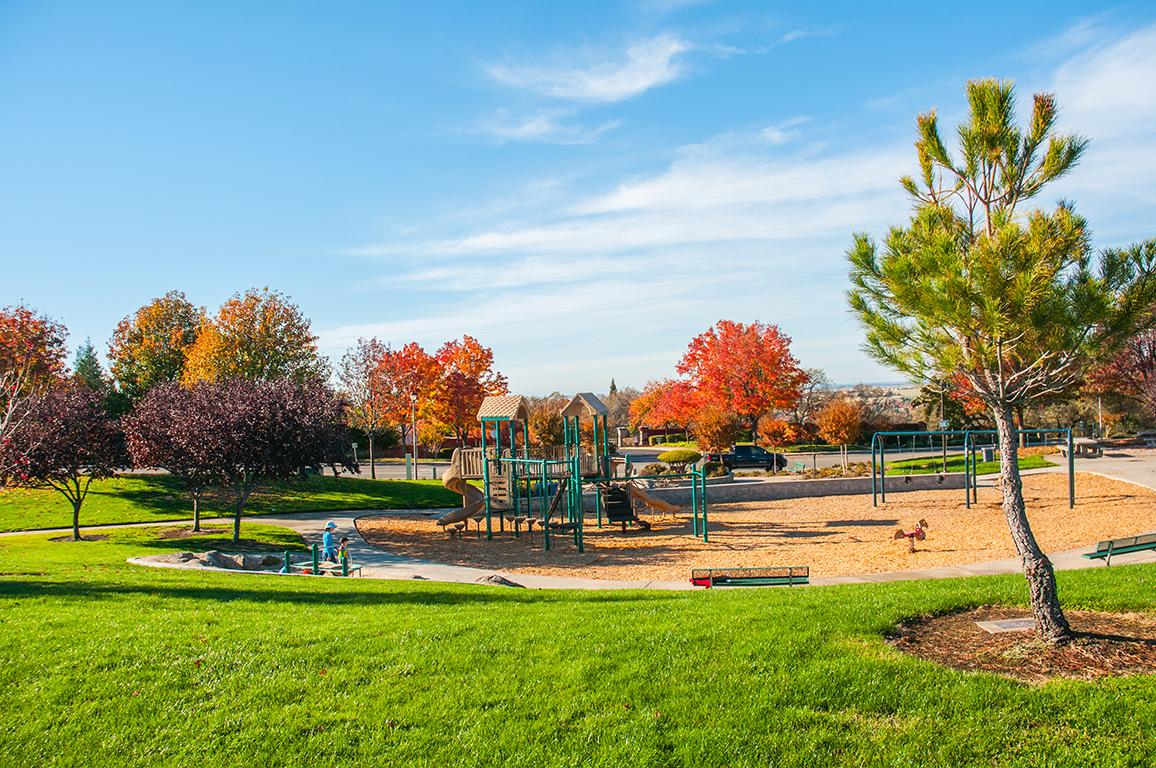 Dog Parks In West Sacramento